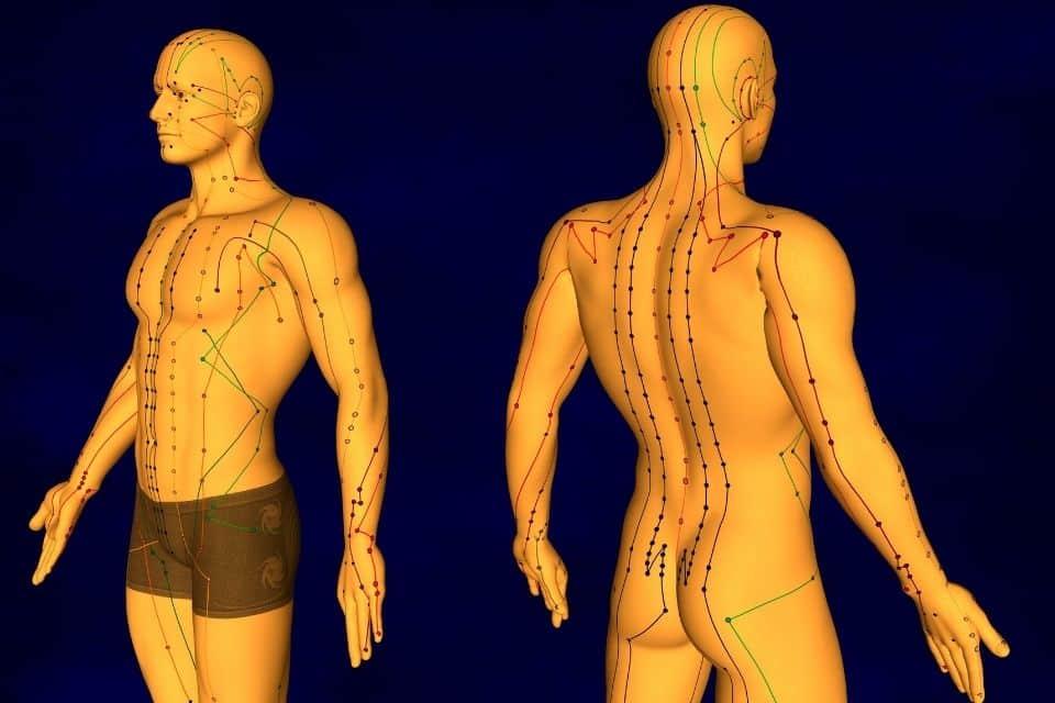 waarvoor acupunctuur aki meridianen